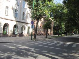 Sauliu Street