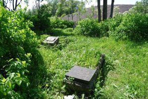 The old cemetery of Žardė village