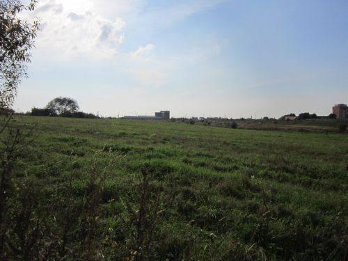 Bandužių, Žardės senovės gyvenvietė, 2014 m.