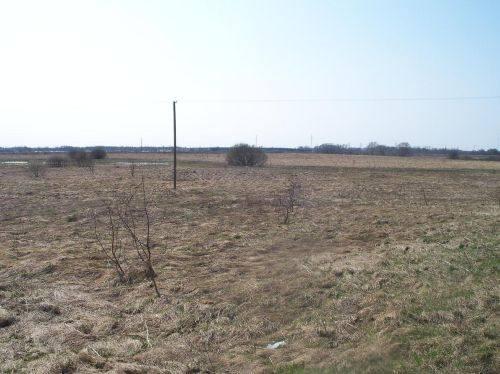 Žardės senovės gyvenvietė, 2014 m.