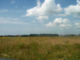 Žardės senovės gyvenvietė, 2002 m.