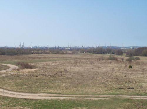 Žardės senovės gyvenvietė II, 2014 m.