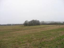 Paupių  kaimo senosios kapinės