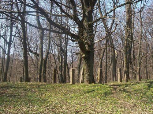 Tauralaukio kaimo senosios kapinės