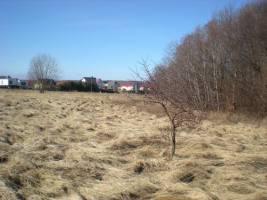 Der Siedlung