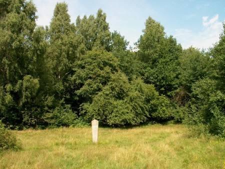 Grabhügel Purmaliai mit der Siedlung, 2002.
