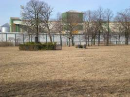 Alter Friedhofkomplex der Stadt Klaipeda, sog. Friedhof Vite